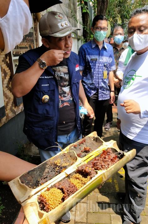 Wakil Wali Kota Bandung Yana Mulyana Tinjau Lebah Madu Trigona