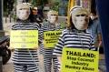 aksi-hentikan-eksploitasi-monyet-di-depan-kedubes-thailand_20201208_191240.jpg