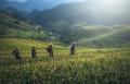 crowde-beberkan-3-hal-terkait-produk-pertanian_20201202_104543.jpg