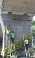 Dishut DKI Jakarta Merawat Taman Vertikal