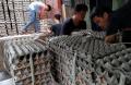 jelang-tahun-baru-imlek-harga-telur-ayam-merangkak-naik_20210210_222018.jpg