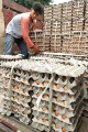 jelang-tahun-baru-imlek-harga-telur-ayam-merangkak-naik_20210210_222748.jpg