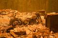 kebakaran-dixie-california-menghancurkan-lahan-seluas-190000_20210726_011240.jpg