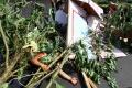 Kota Malang Latihan Kesiapan Bencana