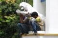 patung-harimau-putih-yang-jatuh-kembali-dipasang_20200210_191727.jpg