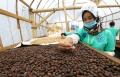 pembekalan-kewirausahaan-inkubasi-bisnis-kemnaker-di-lembang_20200724_203413.jpg