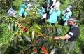 pembekalan-kewirausahaan-inkubasi-bisnis-kemnaker-di-lembang_20200724_203555.jpg