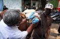Pemeriksaan Hewan Kurban Jelang Idul Adha