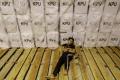 pengemasan-logistik-pemilu-2019-di-kota-pangkalpinang_20190416_212644.jpg