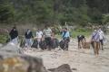 penggiat-lingkungan-bersihkan-pantai-lampuuk-aceh-besar_20201020_114947.jpg