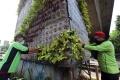Perawatan Taman Vertikal di Jakarta