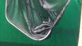peternak-ikan-lele-kutil-07-cimone-ekspor-ke-malaysia_20211015_134351.jpg