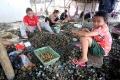 potret-nelayan-pengupas-kerang_20200714_231343.jpg