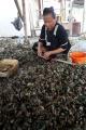 potret-nelayan-pengupas-kerang_20200714_231708.jpg