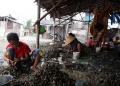 potret-nelayan-pengupas-kerang_20200714_232057.jpg