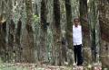 presiden-bersilaturahmi-dengan-petani-karet_20190310_182033.jpg