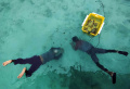 Program Save Ocean and Small Islands di Pulau Harapan
