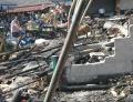 Puing Kebakaran Pasar Kambing Tanah Abang