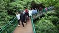 Ridwan Kamil Resmikan Forest Walk Babakan Siliwangi