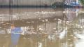 sampah-aliran-sungai-cisadane-tangerang_20210723_154625.jpg