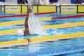 siman-gagal-sumbang-medali-di-asian-games-2018_20180820_194010.jpg