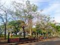 Suasana Nyaman dan Asri Taman Ria Rio Jakarta