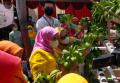 Tren Pertanian di Tengah Kota dalam Masa Pandemi