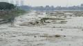 Waduk Pluit Jakarta Terlihat Dangkal