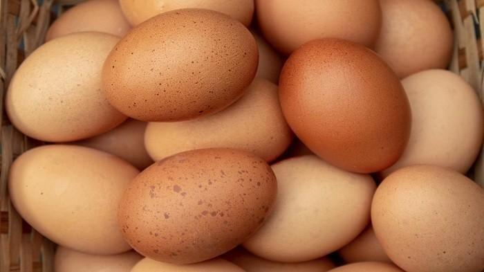 3-cara-mudah-mengetahui-apakah-telur-masih-bisa-dikonsumsi-atau-tidak.jpg
