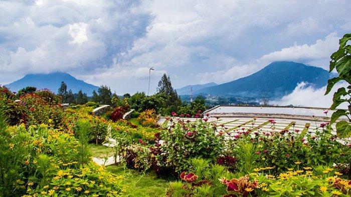 Agrowisata Kopeng Gunungsari