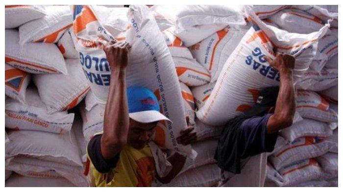 Ilustrasi beras impor