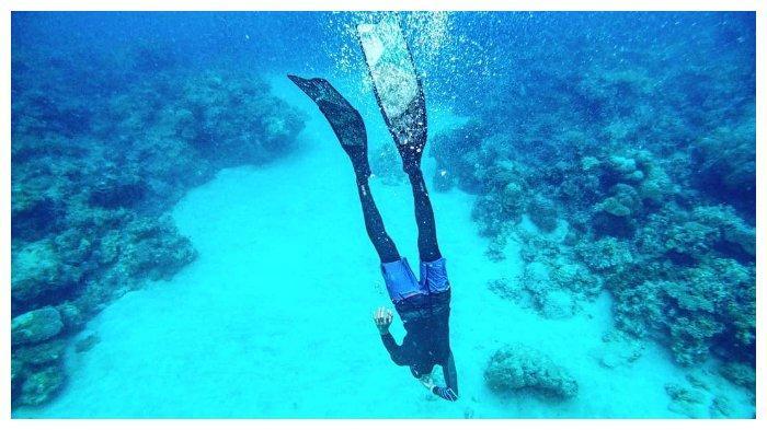 Snorkeling di Pulau Bawean