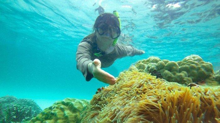 Pengunjung sedang snorkeling di Pulau Ranoh