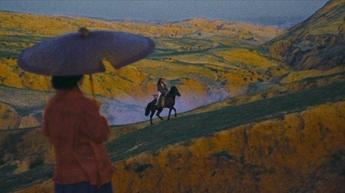 Film Ashes of Time (1994)