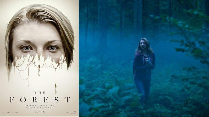 film-the-forest-2016.jpg