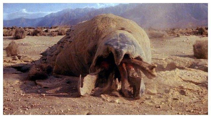 Film Tremors (1990)