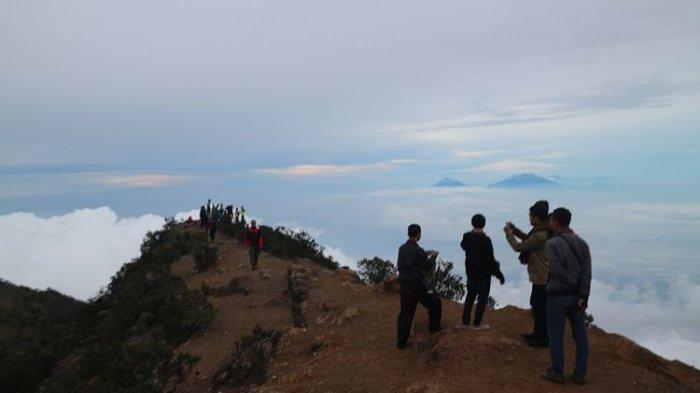 Ingin Mendaki Gunung Lawu Ini Tiga Jalur Resmi Pendakian Gunung Lawu Halaman All Tribunnewswiki Com Mobile
