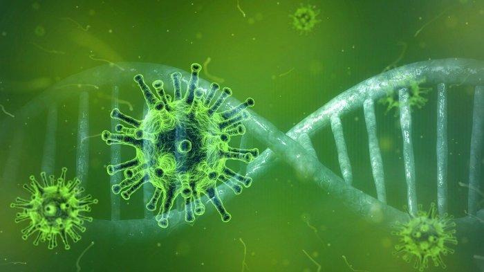 ILUSTRASI - Mutasi virus corona E484K muncul di Afrika Selatan
