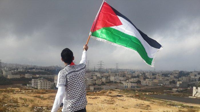 ilustrasi-seorang-pria-mengibarkan-bendera-palestina-1.jpg