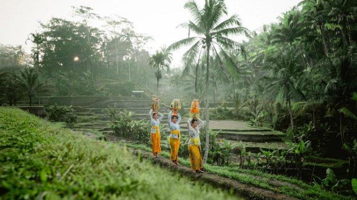 Ilustrasi Subak di Bali