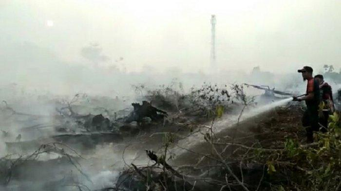 Kebakaran hutan dan lahan terjadi di Pekanbaru, Riau, Senin (9/9/2019).