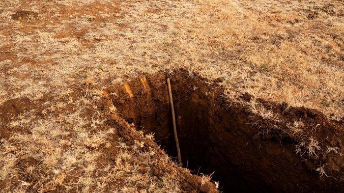 Sebuah foto yang diambil pada 9 Juli 2020 menunjukkan sebuah tongkat yang mengukur kedalaman kuburan yang baru digali di pemakaman Honingnestkrans, di Pretoria, untuk para korban COVID-19 (coronavirus novel). Pemakaman Honingnestkrans adalah salah satu situs pemakaman di Provinsi Gauteng, Afrika Selatan yang dipersiapkan untuk penguburan kematian COVID-19.