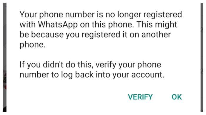 Notif WhatsApp