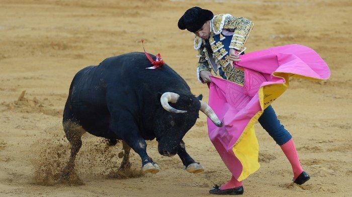pablo-aguado-matador-spanyol.jpg