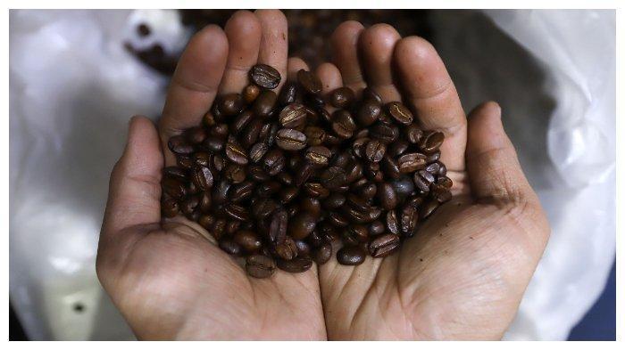 ILUSTRASI KOMODITAS EKSPOR - Pedagang biji kopi saat memperlihatkan beberapa jenis biji kopi Indonesia di Pasar Santa, Jakarta Selatan, Senin (17/12/2018). Indonesia termasuk 5 besar negara penghasil kopi terbesar di dunia dan masih menjadi salah satu negara eksportir kopi terbesar di dunia, Wakil Ketua Asosiasi Eksportir dan Industri Kopi Indonesia (AEKI) Pranoto Soenarto mengatakan setiap tahunnya Indonesia memproduksi kopi sekitar 630.000 ton yang diproduksi oleh petani di Indonesia. Dari jumlah 630.000 ton tersebut, sekitar 430.000 hingga 450.000 ton diekspor ke luar negeri. Sementara sisanya untuk kebutuhan dalam negeri.