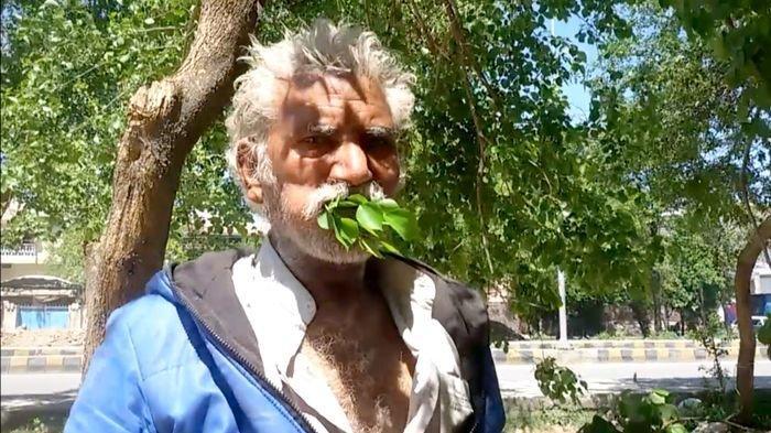 pria-ini-makan-dedaunan-dan-kayu-segar-selama-25-tahun.jpg
