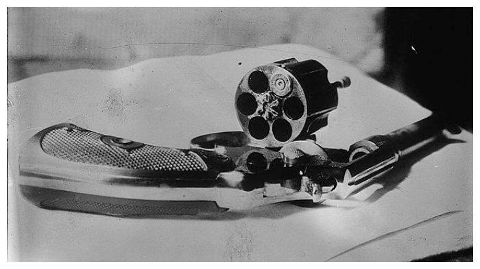 revolver-roosevelt.jpg