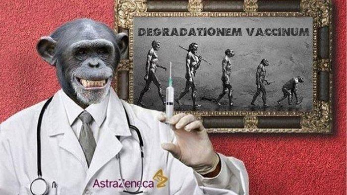 vaksin-covid-jadi-monyet.jpg