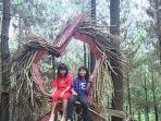 Wisata-Bukit-Pinus-Carangwulung-Wonosalam-Jombang.jpg