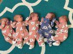 bayi-kembar-5-004.jpg